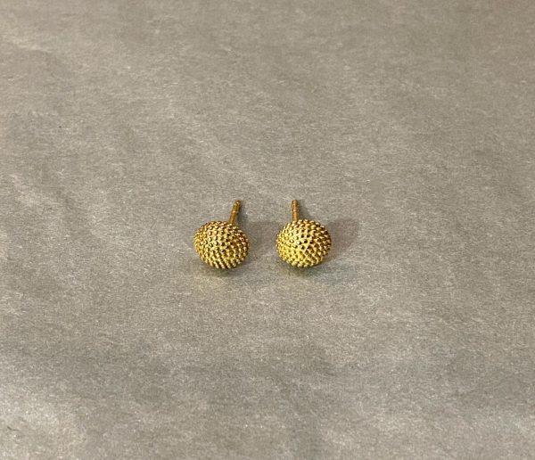 Goldene Ohrenstecker